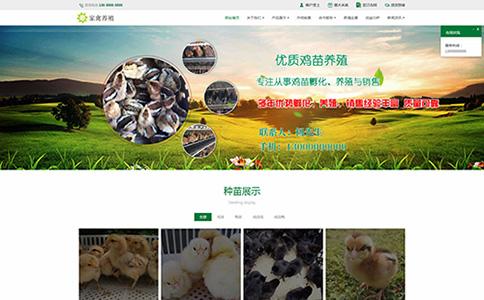 家禽养殖网站模板,家禽养殖网页模板,响应式模板,网站制作,网站建设