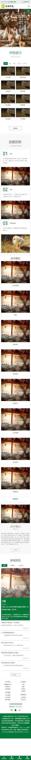 养鸡场网站模板,养鸡场网页模板,养鸡场响应式模板