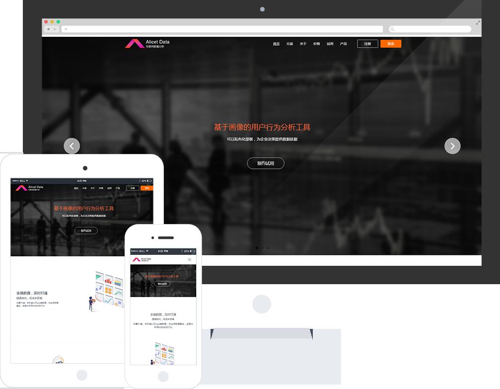 数据分析网站模板_整站源码_响应式网页设计制作搭建