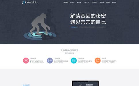 软件公司网站模板